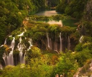 green, vegetation, and river image