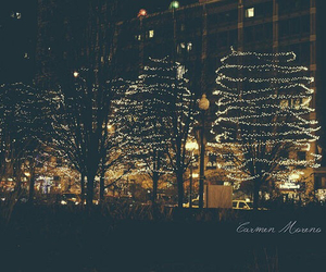 beautiful, lights, and trees image