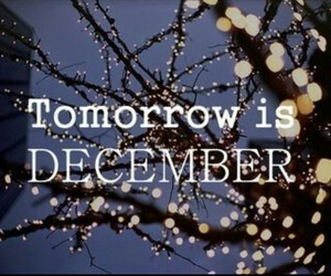 december, lights, and tomorrow image
