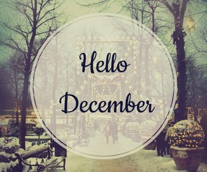 beauty, christmas, and december image