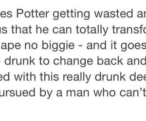 drunk, harry potter, and hp image