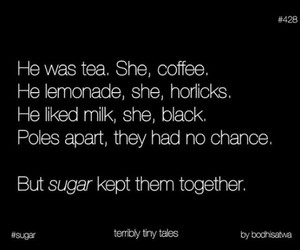 sugar, being together, and terribly tiny tales image