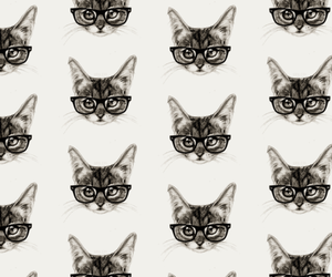 cat and wallpaper image