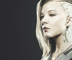 the hunger games and cressida image