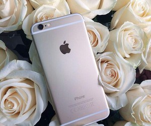 iphone, rose, and flowers image