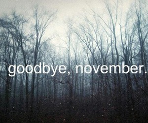 november, goodbye, and december image