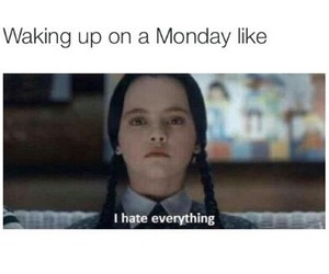 funny, hate, and monday image