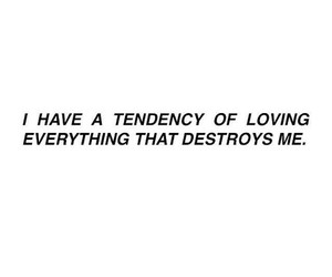 beautiful, destroy, and quotes image