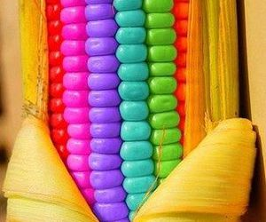 colors, corn, and rainbow image