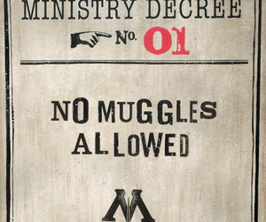 harry potter, muggles, and ministry of magic image
