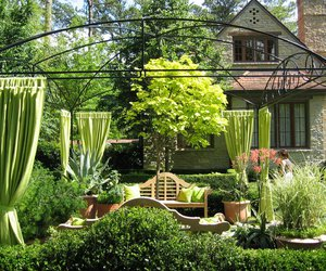 atlanta, plants, and garden image