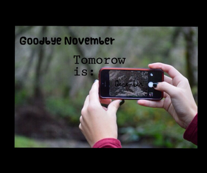 autumn, winter, and hello december image