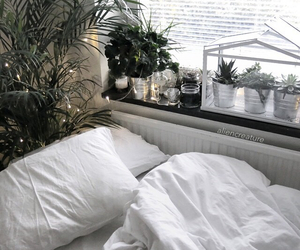plants, bed, and room image