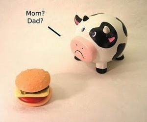 cow, sad, and mom image