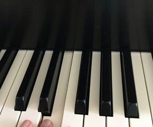 fingers, keys, and piano image