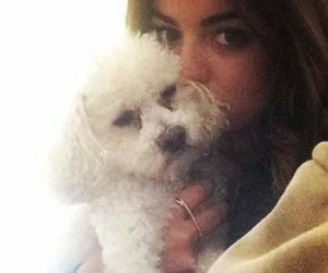 beauty, pll, and lucy hale image
