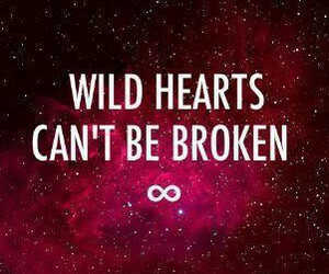 wild, broken, and heart image
