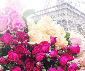 eiffel tower, roses, and paris image