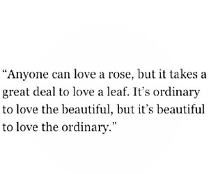 rose, quote, and love image