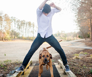 dog, hayes, and hayes grier image