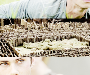 movies and the maze runner image