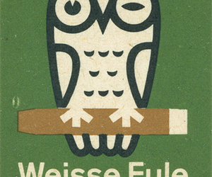 german, green, and owl image