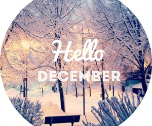 december, winter, and love image