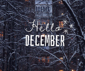 winter, december, and gift image