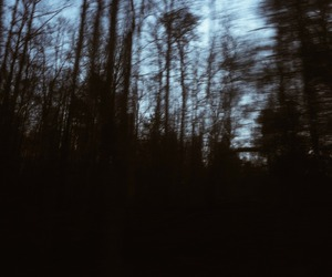 grunge, indie, and photography image