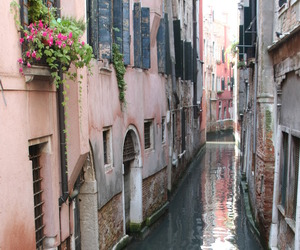 venice, beautiful, and water image