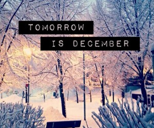 december, paradise, and snow image