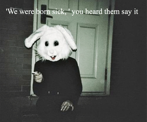 bunny, dark, and grunge image