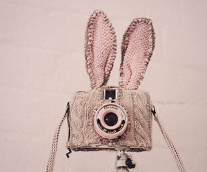 bunny, fun, and picture image