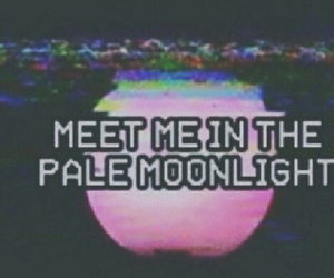 pale, grunge, and moonlight image