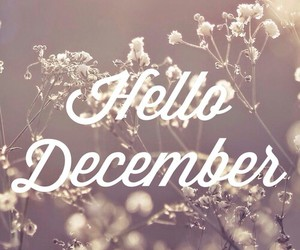 december, snow, and winter image