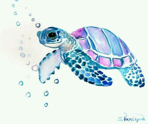 turtle, art, and blue image