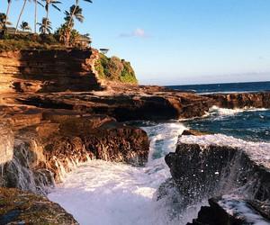 mar, natureza, and palmeiras image
