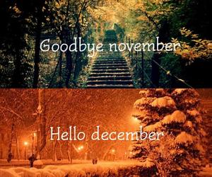december, november, and winter image