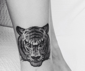 ankle, tattoo, and tiger image