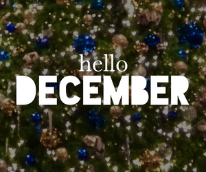 december, design, and gold image