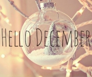 december and white image