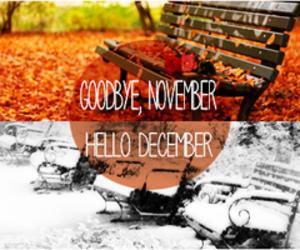 december, winter, and november image