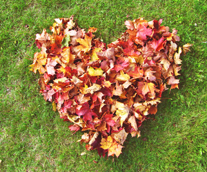 heart, autumn, and fall image