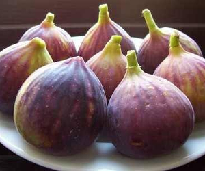 figs, food, and FRUiTS image