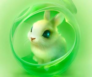rabbit, green, and bunny image