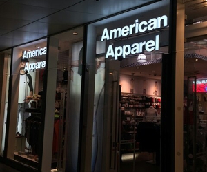 american apparel, grunge, and aa image