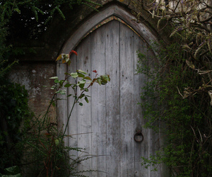 door, forest, and nature image