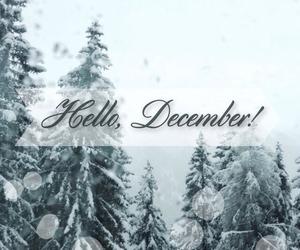 christmas, cold, and neve image