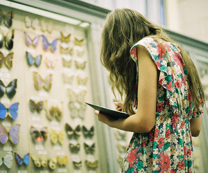 butterfly, girl, and dress image