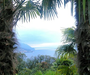 italy, nature, and lago maggiore image